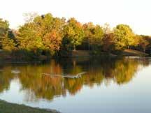 pine hill lakes park