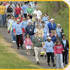 Crowd on Path